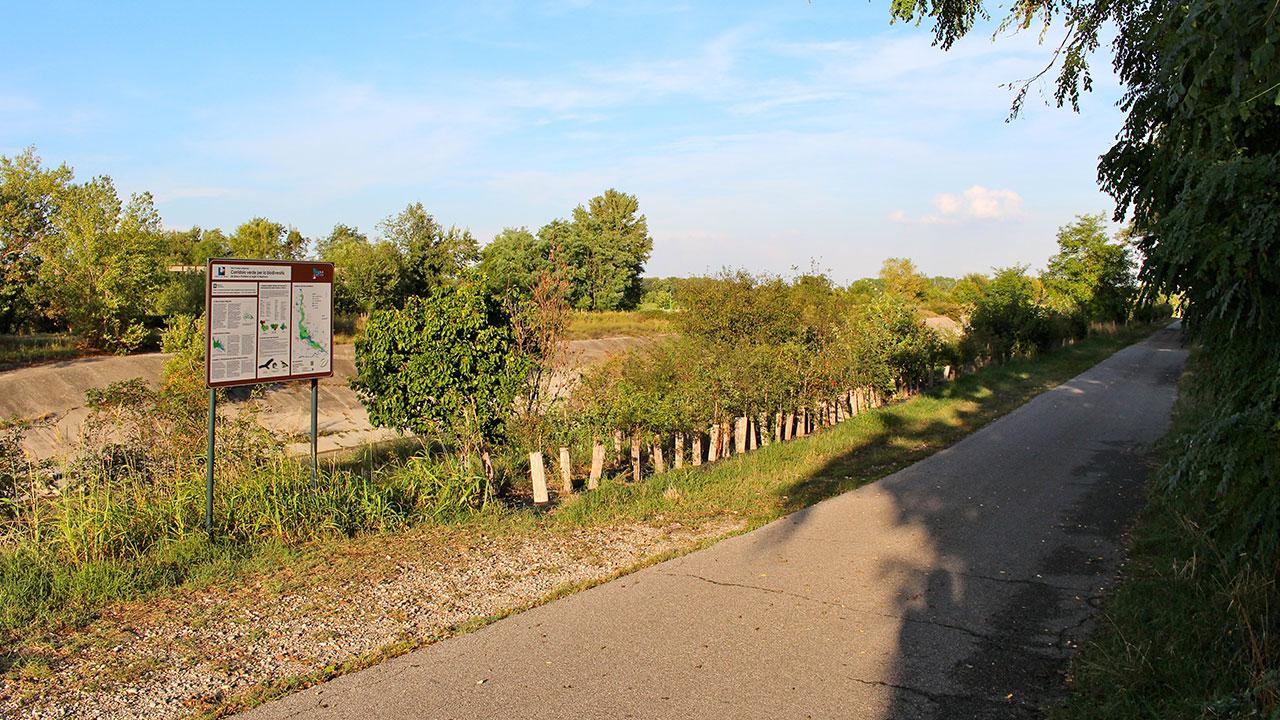 Rete ecologica canale Diversivo di Mincio | Parco del Mincio